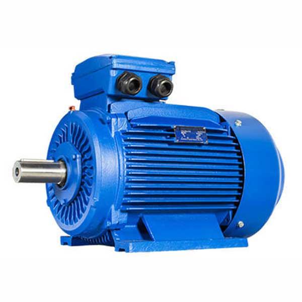 chinese-electromotor